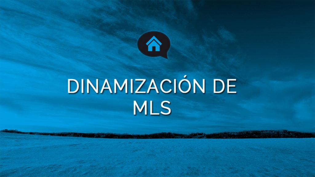 Angel Gil dinamización de MLS